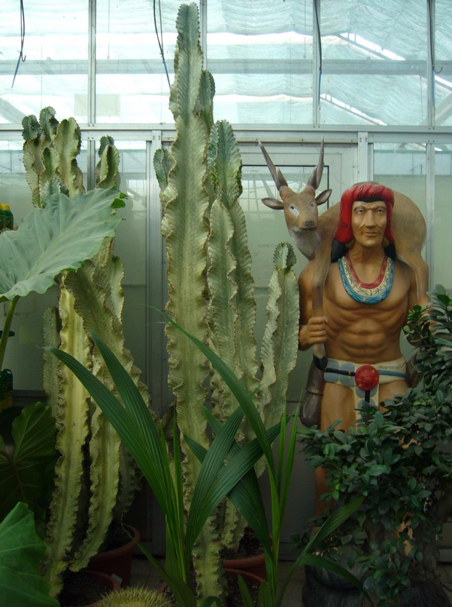 Indian at a greenhouse, photo, 2007
