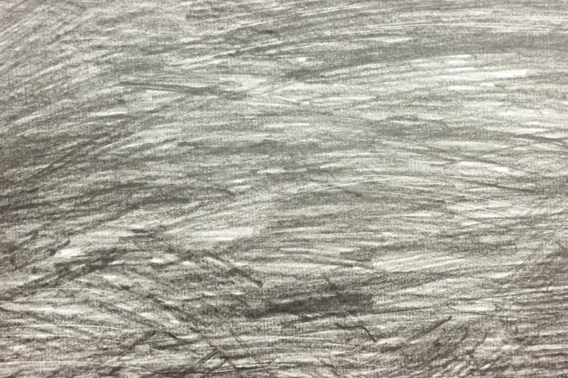 Hands holding a landscape - graphite on paper, detail